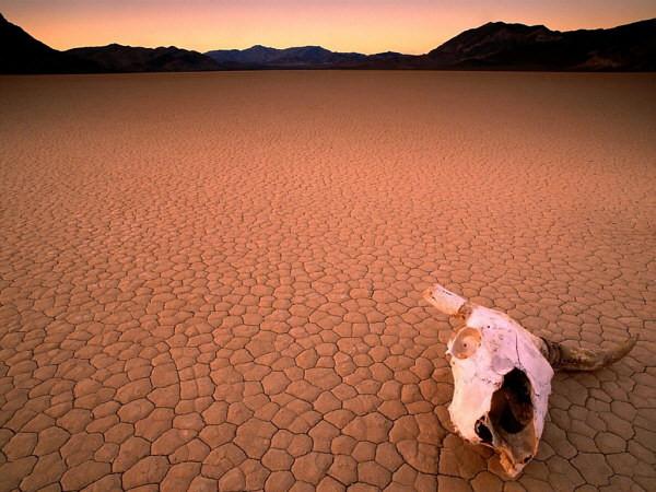 Иллюстрация на тему Долина Смерти в США, штат Калифорния: движущиеся камни, фото и видео