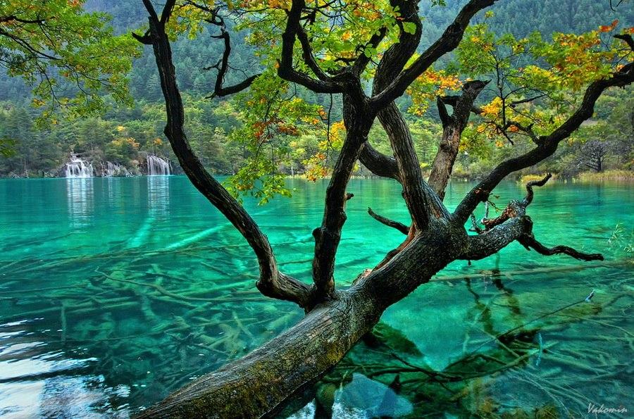 Иллюстрация на тему Уникальное озеро Пяти цветков в Цзючжайгоу, Китай